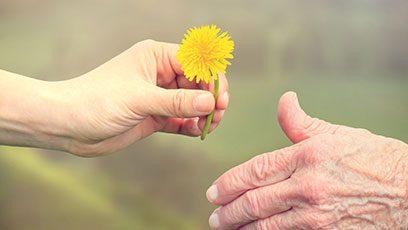 יד מושיטה פרח כחלק מתמיכה בחולה הנוטה למות