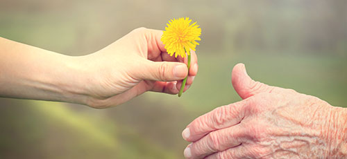 טיפול פליאטיבי, תרומה לעמותה, הוספיס בית