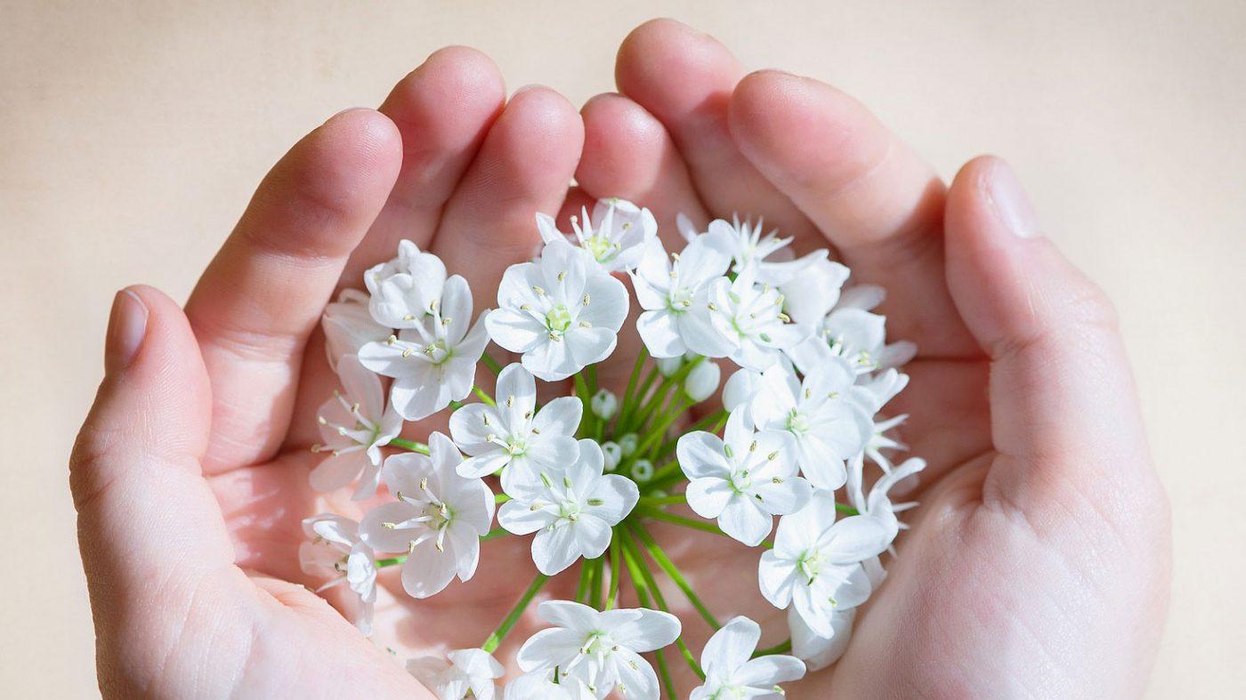 פרחים בכף היד